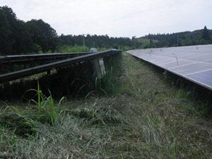 太陽光発電施設の草刈りの年間契約:草刈り後03