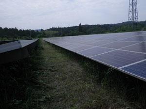 太陽光発電施設の草刈りの年間契約:草刈り後02