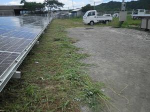 太陽光発電施設の草刈りの実例