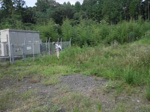 太陽光発電施設の草刈り 雑草処理07