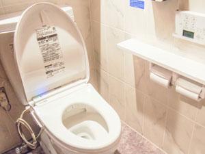 水洗トイレ工事の為