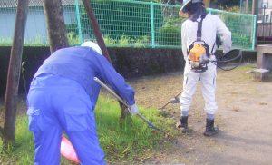 公園清掃3
