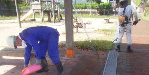 公園清掃6