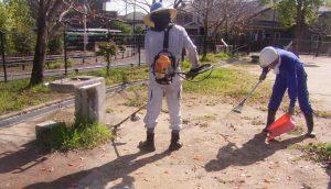 公園清掃7