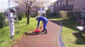公園清掃10