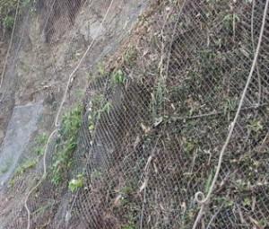 鹿児島 法面伐採