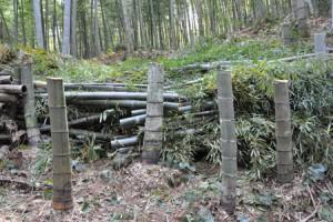 鹿児島 竹やぶ 伐採