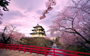 Japan-Wallpaper-Hirosaki-castle-Trees-sakura-bloom-bridge