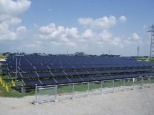 鹿児島 太陽光発電 雑草 除草