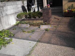 施工前:花壇部分を撤去予定