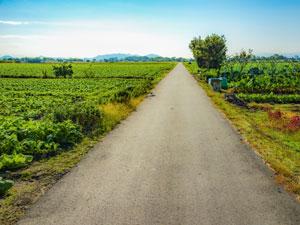 農道について