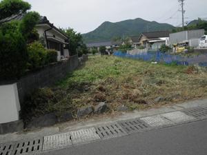 住宅庭の草刈り・剪定作業風景 作業後