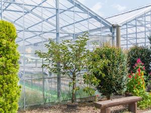 屋内農場 新しい農業スタイル
